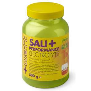 +Watt - Sali+ Performance 500 g