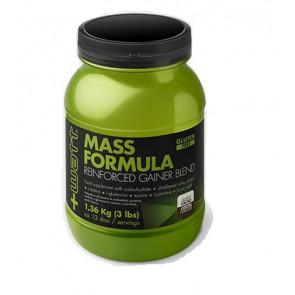 +Watt - Mass Formula 1,360 kg